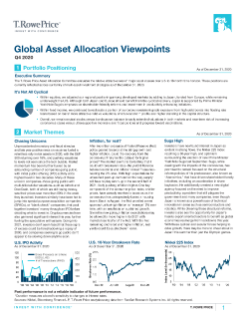 Asset Allocation Viewpoints End Client PDF