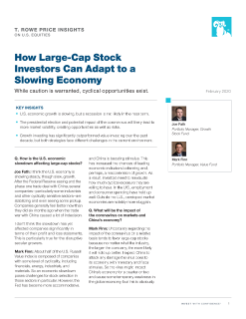 How Large‑Cap Stock Investors Can Adapt to a Slowing Economy