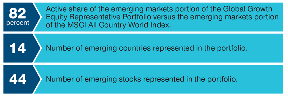 Emerging Markets Portion of Global Growth Equity Representative Portfolio