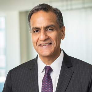 Richard R. Verma, Director, Vice Chairman and Partner, The Asia Group