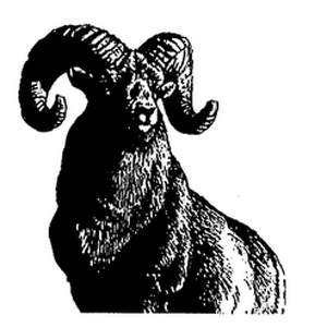 The bighorn sheep, the T. Rowe Price symbol.