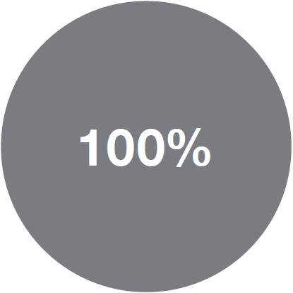 Pie graph showing 100% of the portfolio is in money markets.